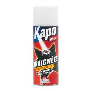 Insecticide araignées KAPO foudroyant