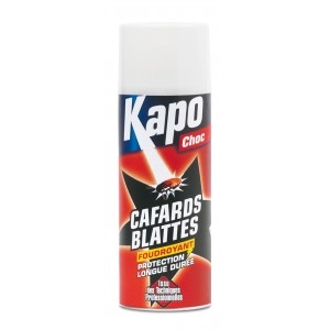 Insecticide cafards /blattes KAPO (spray foudroyant)